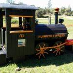 pumpkin-train